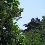 Suzhou 43 B