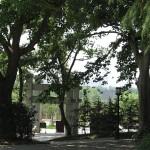 Suzhou 46 B