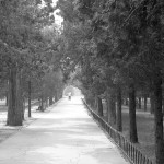 Temple of Heaven 15 BW
