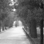 Temple of Heaven 16 BW